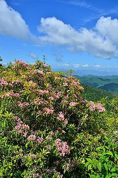 Great Balsam Mountains along thye Blue Ridge Parkway by Michael Weeks