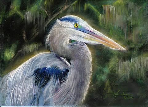 Great Blue Heron by Melissa Herrin