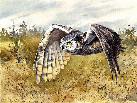 Great Horned Owl in Flight by Sam Sidders