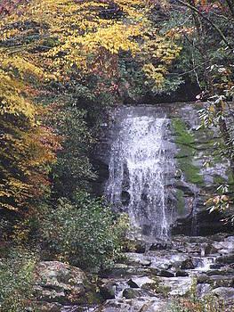 Great Smokey Mountains Waterfall by Diane Frick