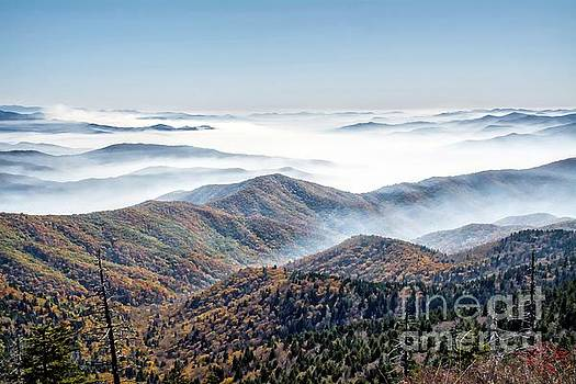 Great Smoky Mountains by Debbie Green