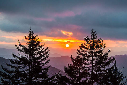 Great Smoky Mountains National Park NC Between The Firs by Robert Stephens