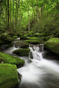 Great Smoky Mountains Roaring Fork by Mark VanDyke