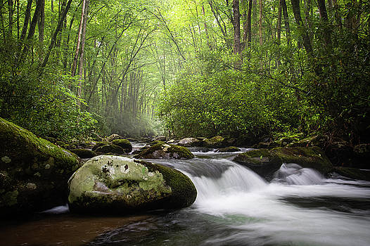Great Smoky Mountains TN NC Oconaluftee Flow by Robert Stephens