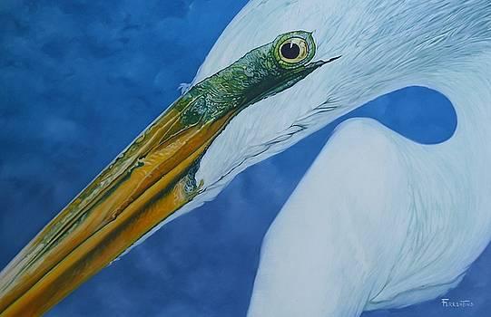 Great White Egret by Jon Ferrentino