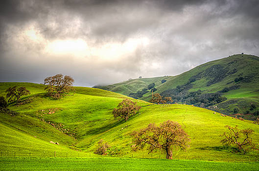 Green Acres of California by Spencer McDonald
