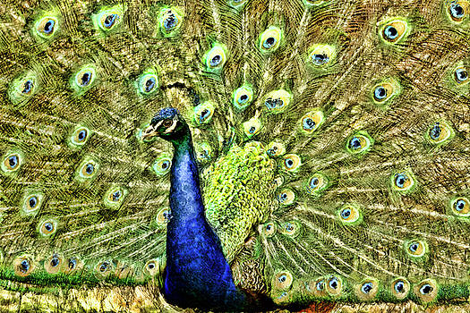 Green and blue by Geraldine Scull
