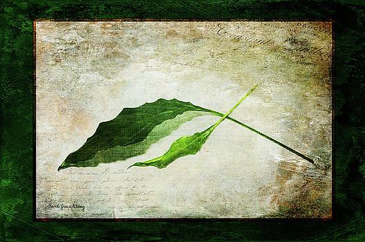 Green Balance by Randi Grace Nilsberg