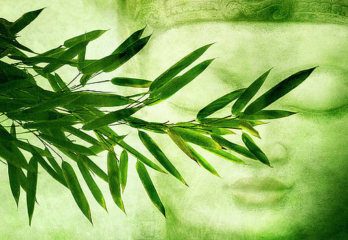Green Bamboo by Claudia Moeckel