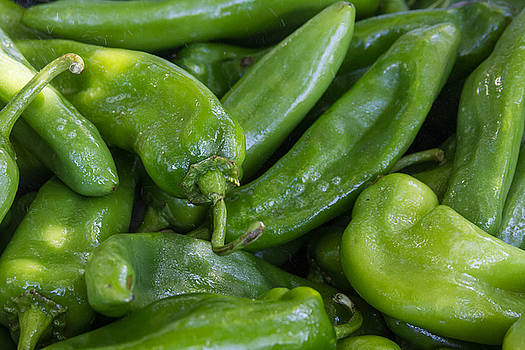 Green Chile Peppers by James BO  Insogna