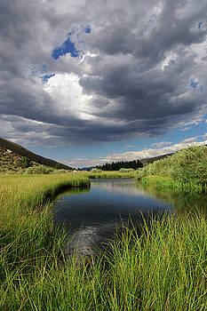 Green Creek 2 By Frank Hawkins by Eastern Sierra Gallery