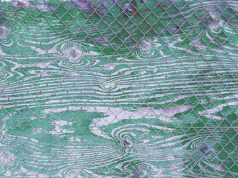 Green Fence by Anna Villarreal Garbis