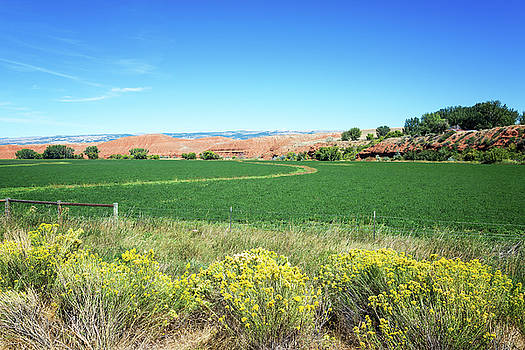 Green Fields and Red Hills by Jess Kraft