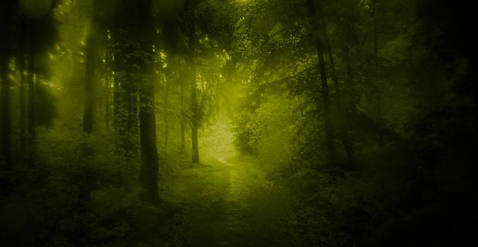 Green Forest by Dorit Fuhg