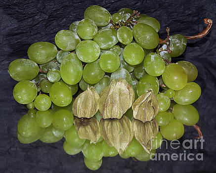 Green Fruits by Elvira Ladocki