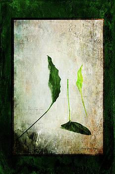 Green Harmony by Randi Grace Nilsberg