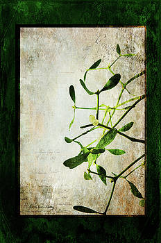 Green Illusion by Randi Grace Nilsberg
