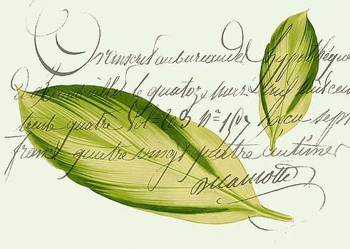 Green Leaf by Sarah Vernon