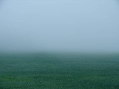 Green Mist Wonder by Carrie  Godwin