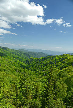 Green Mountains And Cloudy Blue Sky 002 by George Bostian