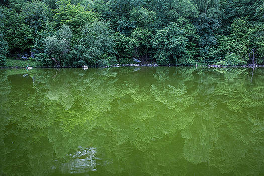 green reflections at the Tanzteich, Harz by Andreas Levi