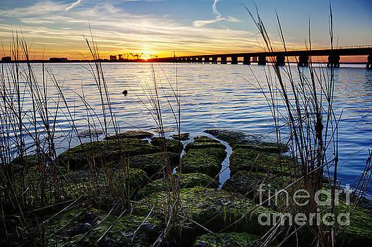Green Rock Sunset by Joan McCool