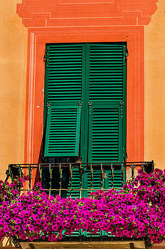 Green shutters and flowers Venice Italy by Xavier Cardell