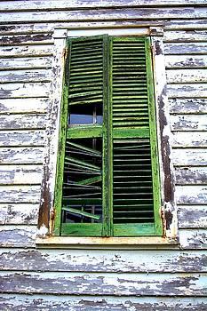 Green Shutters by Kathy Barney