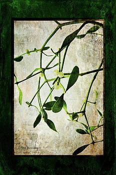 Green Tales  by Randi Grace Nilsberg