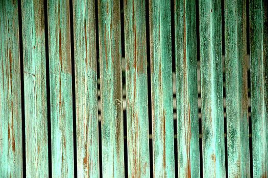Green Texture Fence by Mike Lindwasser Photography