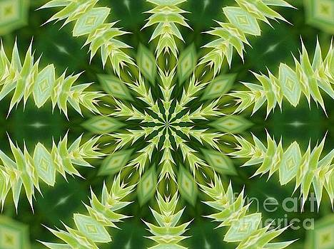 Green Thistle Medallion by Shirley Moravec