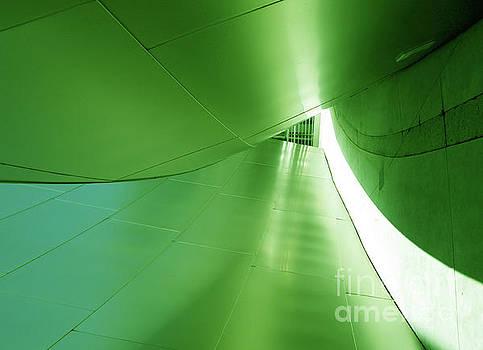 Green Tunnel. Los Angeles Series. by Ausra Huntington nee Paulauskaite