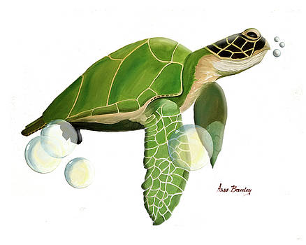 Green Turtle in Oil by Anne Beverley-Stamps