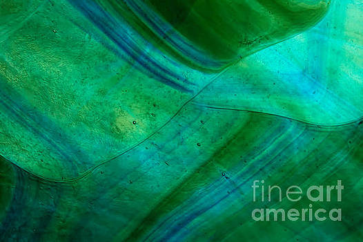 Green Wave by Jared Shomo