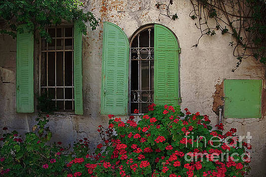 Green windows and red geranium flowers by Yair Karelic