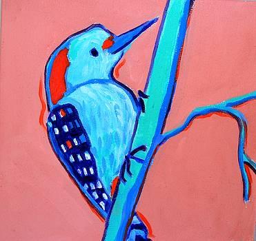 Greenough woodpecker by Debra Bretton Robinson