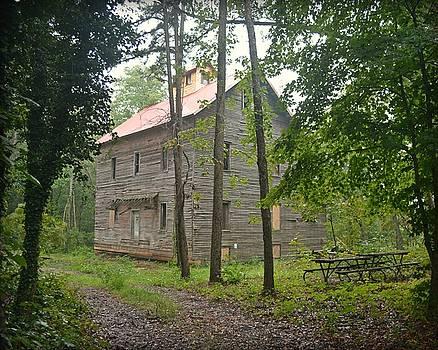 Marty Koch - Greer Spring Mill 1