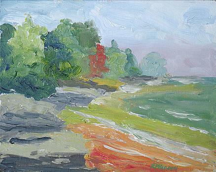 Grenadier Island NY by Robert P Hedden