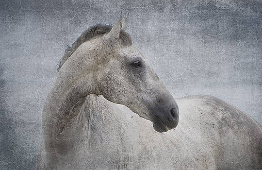 Michelle Wrighton - Grey at the Beach Textured