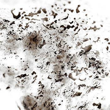 Frank Tschakert - Grey Moss Abstract