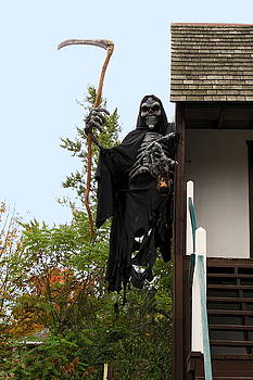 Grim Reaper by Sally Weigand