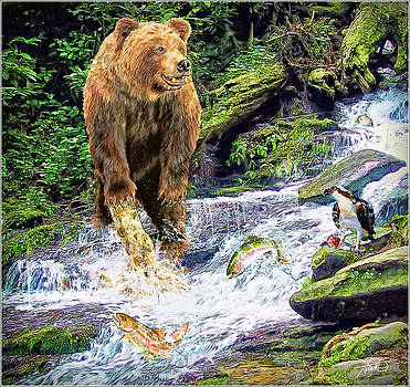 Grizzly Bear by Tom Schmidt