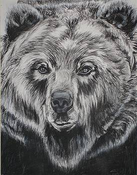 Grizzly by Sarah Glass