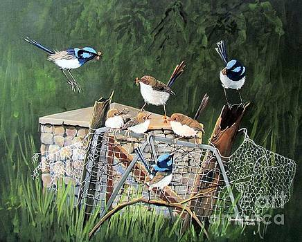 Group of Superb Fairy Wrens with fledglings by Audrey Russill