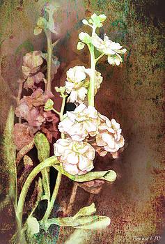 Grungy floral bouquet by Bonnie Willis