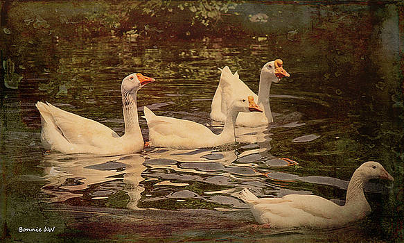 Grungy Chinese Geese by Bonnie Willis