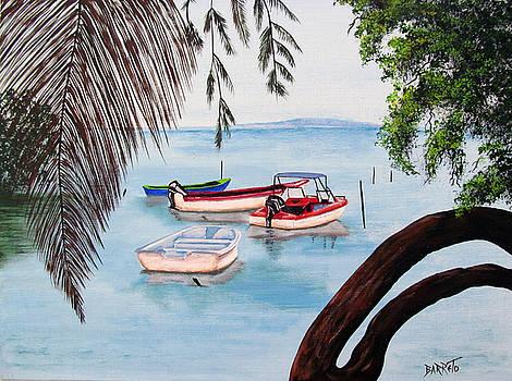 Guanica Bay by Gloria E Barreto-Rodriguez