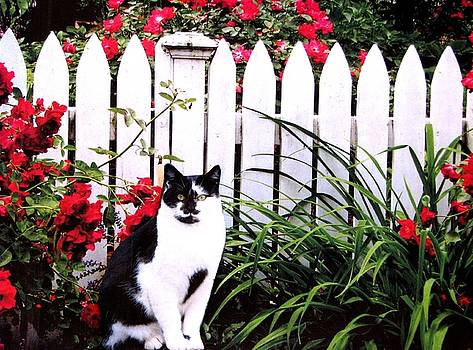 Guarding The Rose Garden by Angela Davies