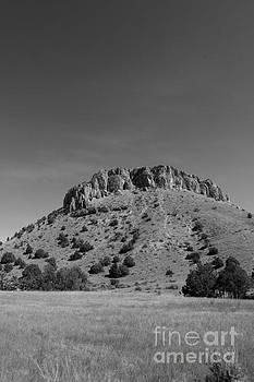 Gulch 2 Cave Top Mound by Heather Giebel