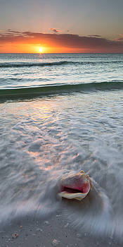 Gulf Coast Sunset  by Patrick Downey